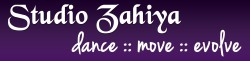 SZ_logo_300